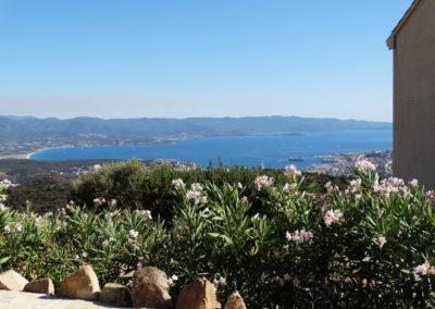 Fleurs et vue sur Ajaccio